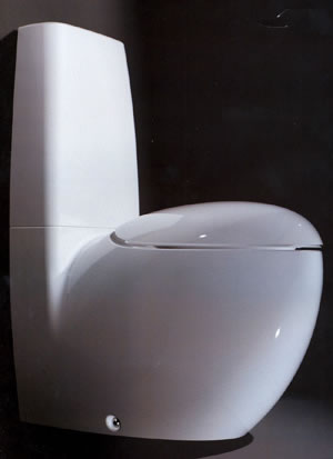 Laufen Alessi One Bathroom Toilet